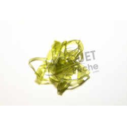 Scud backs FLY SCENE 3.1mm Olive clair