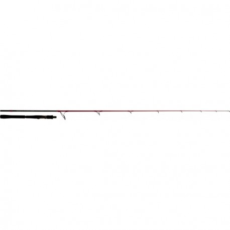 Canne TENRYU INJECTION SP 73M EVO 2m21 5-28gr
