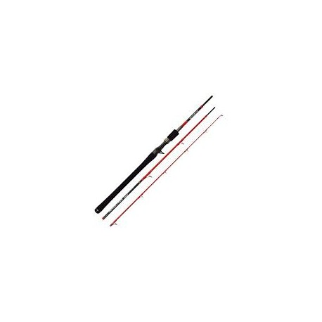 Canne TENRYU INJECTION BC 68XH Travel 2m03 20-70gr